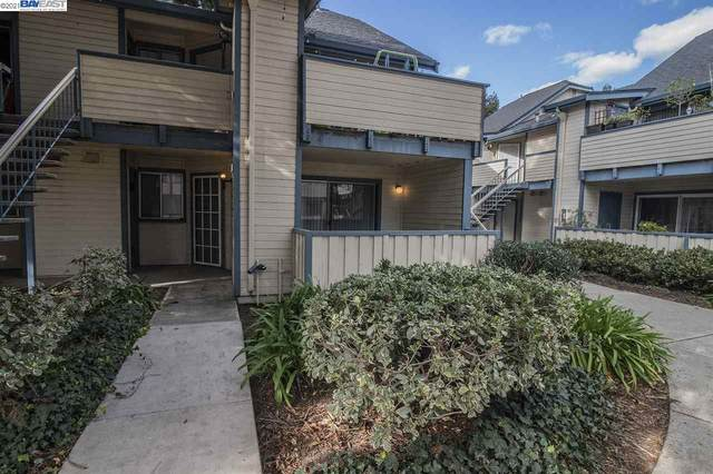 46812 Winema Cmn, Fremont, CA 94539 (#40937781) :: Jimmy Castro Real Estate Group