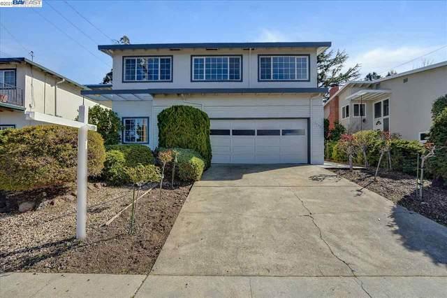 19056 Schuster Ave, Castro Valley, CA 94546 (#40938988) :: Excel Fine Homes