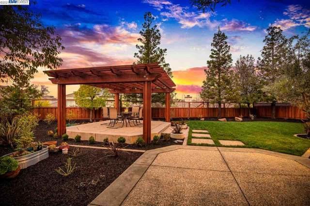 534 Montori Ct, Pleasanton, CA 94566 (#40940232) :: Armario Homes Real Estate Team