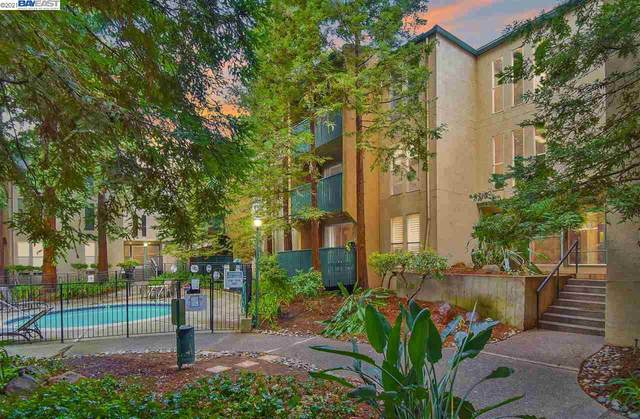 155 Sharene Ln #117, Walnut Creek, CA 94596 (#40940726) :: Armario Homes Real Estate Team