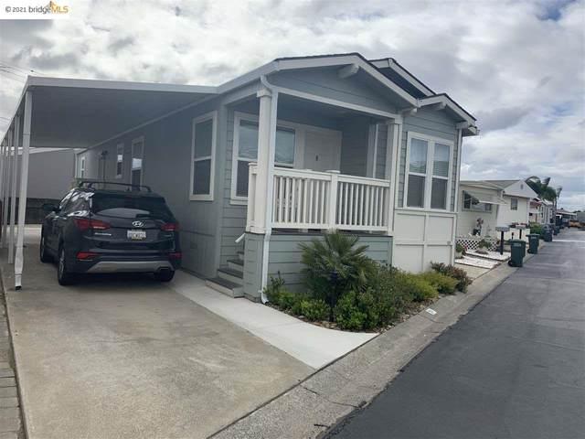 24 Otsego  St, Oakley, CA 94561 (#40941414) :: Armario Homes Real Estate Team