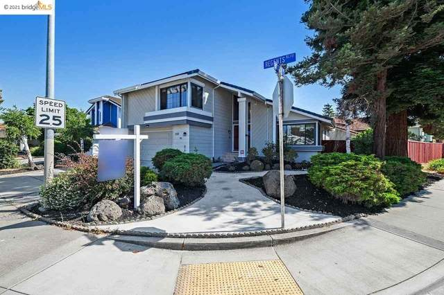 4800 Rocklin Dr, Union City, CA 94587 (#40954759) :: MPT Property