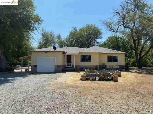 1120 Walnut Blvd, Brentwood, CA 94513 (#40954789) :: Armario Homes Real Estate Team