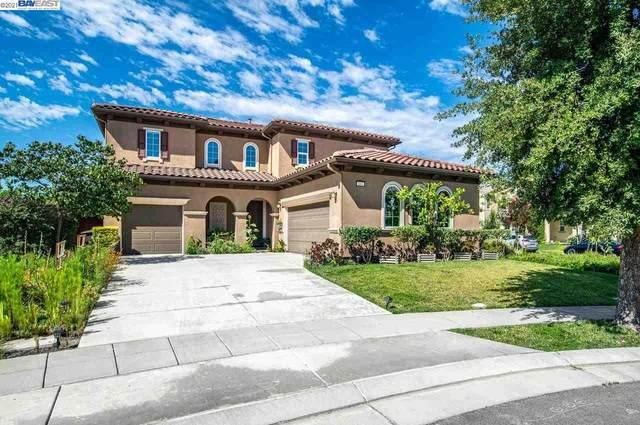 446 W Santa Inez Ct, Mountain House, CA 95391 (#40958030) :: The Venema Homes Team
