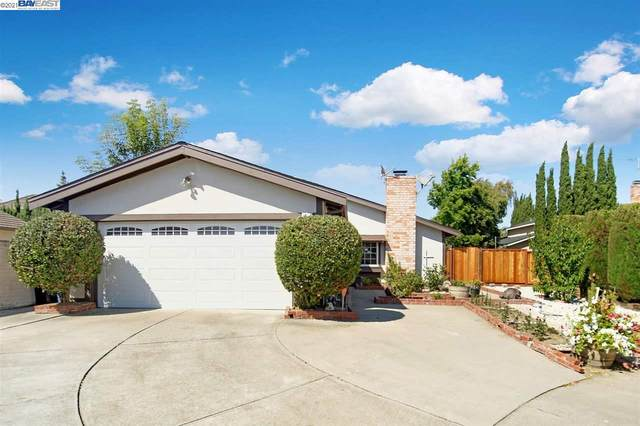 34312 Chester Ct, Fremont, CA 94555 (#40959557) :: Blue Line Property Group