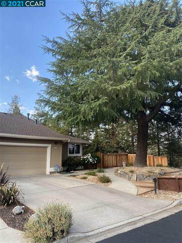 255 Western Hills Dr, Pleasant Hill, CA 94523 (#40961321) :: Blue Line Property Group