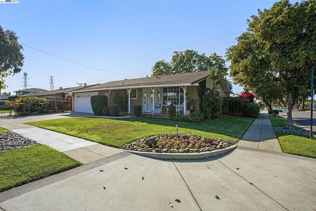 5101 Roycroft Way, Fremont, CA 94538 (#40965876) :: MPT Property