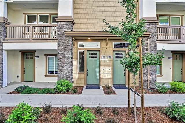 185 Carson Falls Terrace, Fremont, CA 94539 (#40971248) :: The Lucas Group