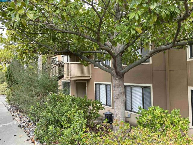 2400 Pine Knoll Dr #6, Walnut Creek, CA 94595 (#40972261) :: The Lucas Group