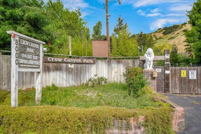 8000 Crow Canyon Road, Castro Valley, CA 94552 (#ML81792919) :: Armario Venema Homes Real Estate Team