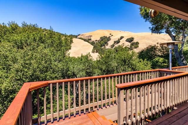 38015 Stenhammer Drive, Fremont, CA 94536 (#ML81803215) :: Armario Venema Homes Real Estate Team