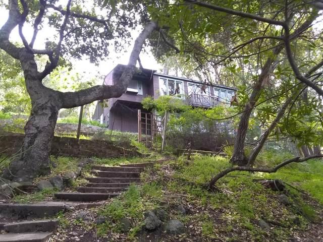3765 Laurel Way, Redwood City, CA 94062 (#ML81837564) :: Realty World Property Network