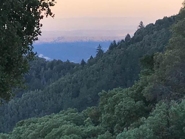 12500 Empire Grade, Santa Cruz, CA 95060 (#ML81845907) :: Swanson Real Estate Team | Keller Williams Tri-Valley Realty