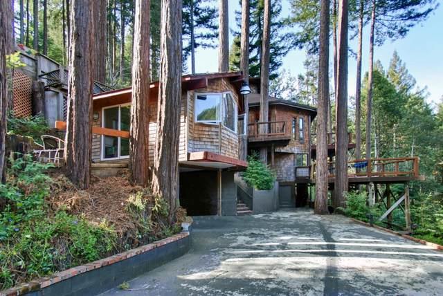10650 Lomita Avenue, Felton, CA 95018 (#ML81850491) :: Realty World Property Network