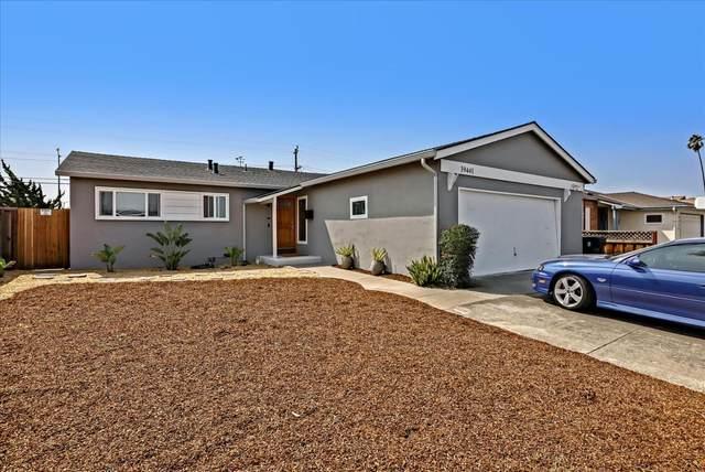 39441 Blue Fin Way, Fremont, CA 94538 (#ML81863877) :: The Grubb Company