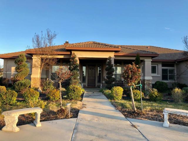 9641 Show Jumper Court, WILTON, CA 95693 (#ML81694124) :: Armario Venema Homes Real Estate Team