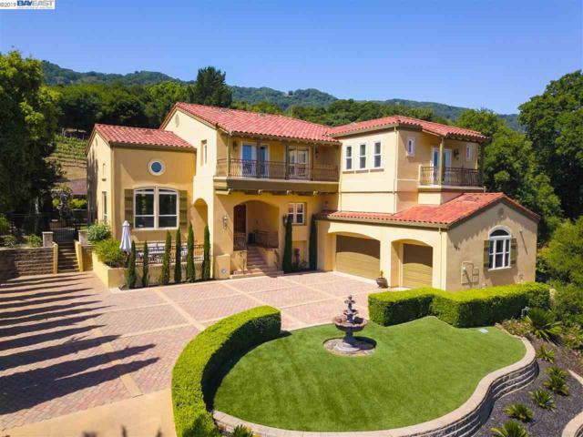 899 Oak Manor Way, Pleasanton, CA 94566 (#40863762) :: Armario Venema Homes Real Estate Team