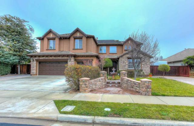 2104 Gold Poppy St, Brentwood, CA 94513 (#40807885) :: Estates by Wendy Team