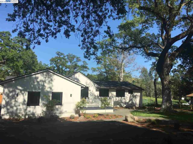 7402 Foothill Road, Pleasanton, CA 94566 (#40815987) :: Armario Venema Homes Real Estate Team
