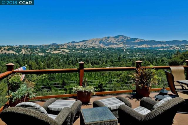 451 Starmont Court, Danville, CA 94526 (#40825831) :: Armario Venema Homes Real Estate Team