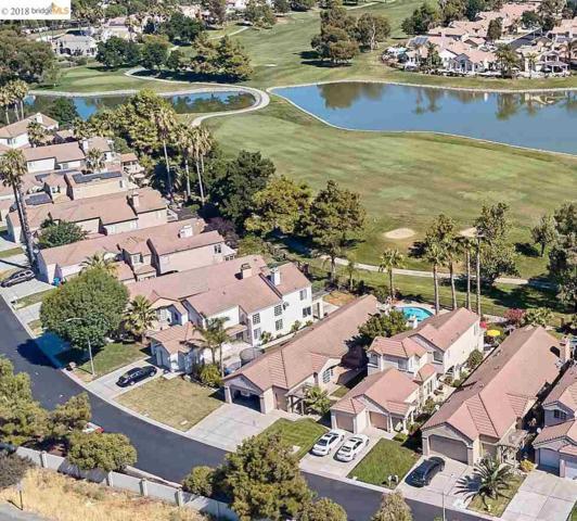 2448 Wayfarer Ct, Discovery Bay, CA 94505 (#40831762) :: Armario Venema Homes Real Estate Team