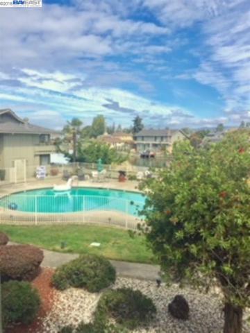 339 Broadway #203, Alameda, CA 94501 (#40835740) :: Armario Venema Homes Real Estate Team