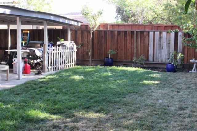 1630 Wendy Dr, Pleasant Hill, CA 94523 (#40838258) :: The Lucas Group