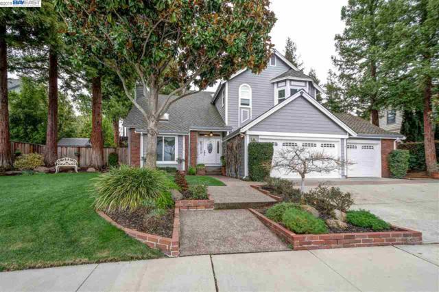 1008 Malaga Ct, Pleasanton, CA 94566 (#40855869) :: Armario Venema Homes Real Estate Team