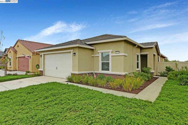 2675 Fern Meadow Ave., Manteca, CA 95336 (#40859827) :: Armario Venema Homes Real Estate Team