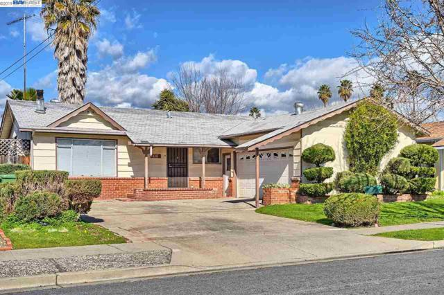 4255 Michael Ave, Fremont, CA 94538 (#40860573) :: The Grubb Company