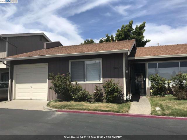 20216 San Miguel Ave, Castro Valley, CA 94546 (#40861115) :: Armario Venema Homes Real Estate Team