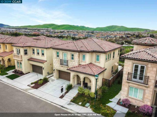 6084 Alpine Blue Dr, San Ramon, CA 94582 (#40861302) :: Armario Venema Homes Real Estate Team