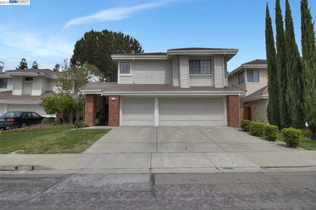 43947 Rosemere Dr, Fremont, CA 94539 (#40861633) :: Armario Venema Homes Real Estate Team