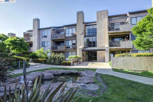 39152 Guardino Dr #206, Fremont, CA 94538 (#40865210) :: Armario Venema Homes Real Estate Team