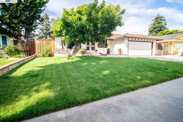 4851 Windermere Dr, Newark, CA 94560 (#40869964) :: Armario Venema Homes Real Estate Team