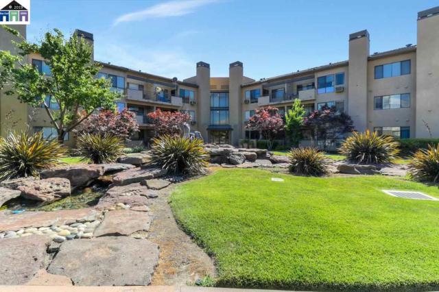 39206 Guardino #201, Fremont, CA 94538 (#40870469) :: Realty World Property Network