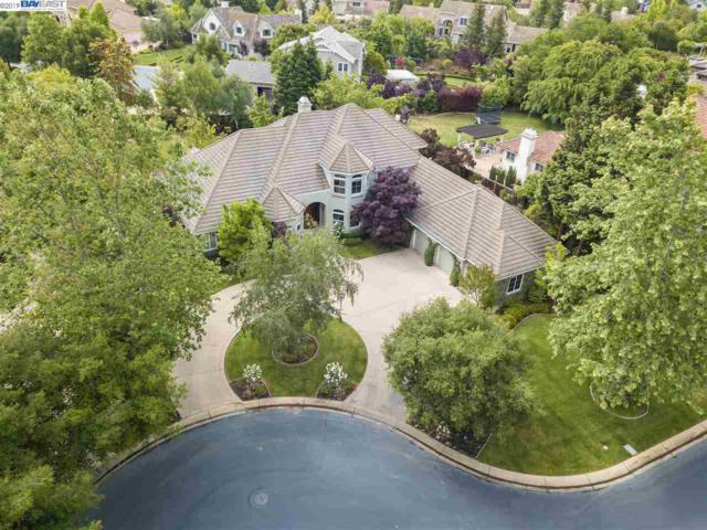 1673 Orvieto Ct, Pleasanton, CA 94566 (#40870832) :: Armario Venema Homes Real Estate Team