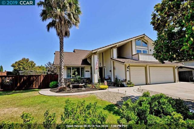203 Mt Wilson Pl, Clayton, CA 94517 (#40871380) :: J. Rockcliff Realtors