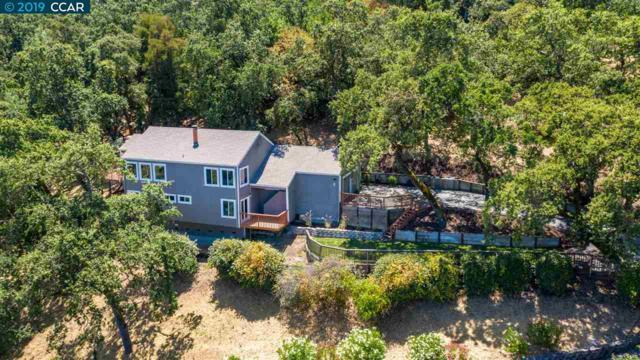 6 Roxanne Lane, Lafayette, CA 94549 (#40874050) :: Armario Venema Homes Real Estate Team