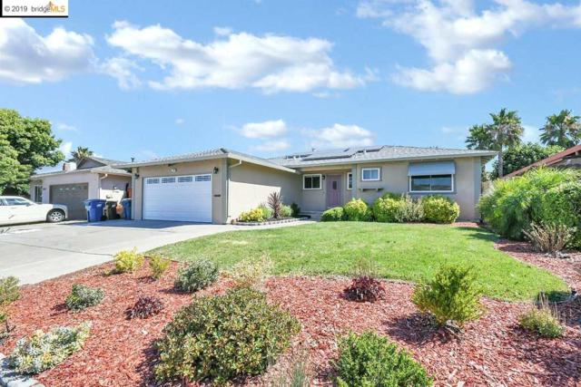 1516 Mission Drive, Antioch, CA 94509 (#40874063) :: Armario Venema Homes Real Estate Team