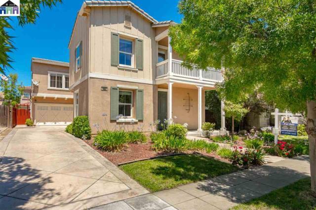 161 W Prosperidad Way, Mountain House, CA 95391 (#40874141) :: Armario Venema Homes Real Estate Team