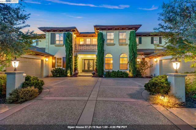 1192 Paladin Way, Pleasanton, CA 94566 (#40874729) :: Armario Venema Homes Real Estate Team