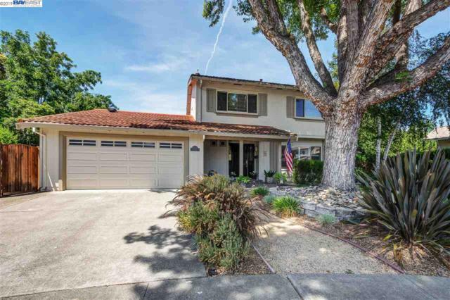 2670 Corte Elena, Pleasanton, CA 94566 (#40874941) :: Armario Venema Homes Real Estate Team