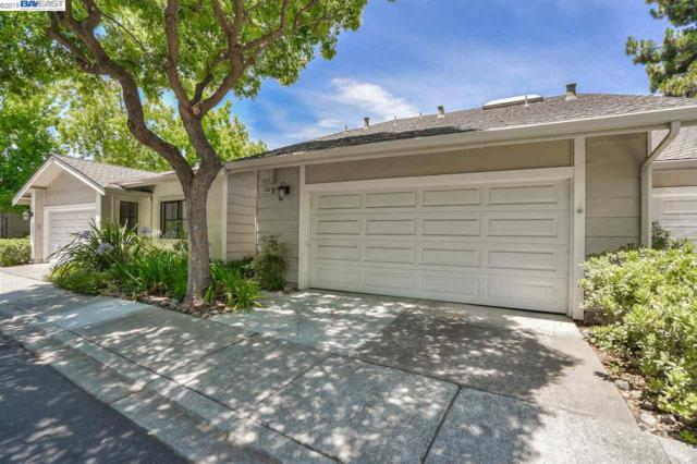41444 Timber Creek Ter, Fremont, CA 94539 (#40875059) :: The Grubb Company