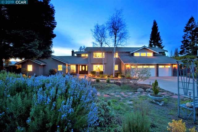 17 Kemp Ct, Alamo, CA 94507 (#40881849) :: Armario Venema Homes Real Estate Team