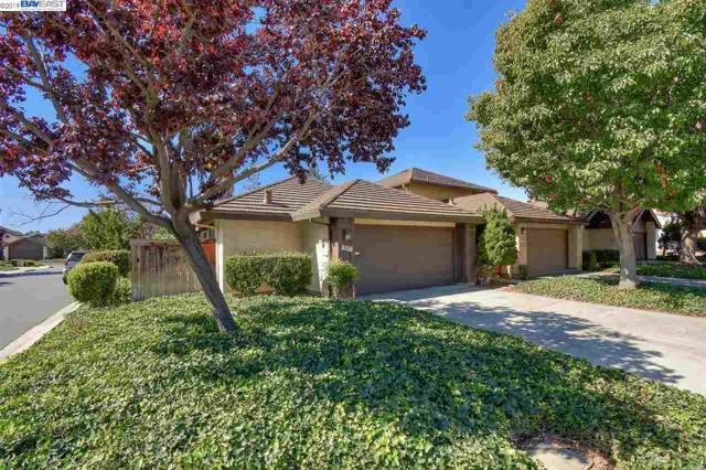 807 Clearview Dr, San Jose, CA 95133 (#40885076) :: The Lucas Group