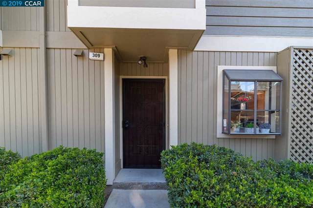309 Eastgate Ln, Martinez, CA 94553 (#40888009) :: Armario Venema Homes Real Estate Team