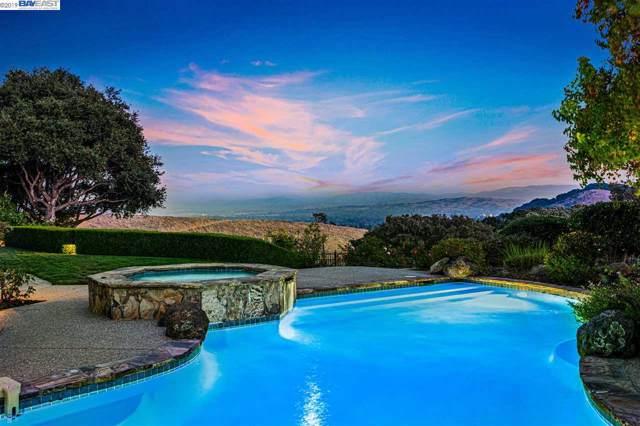 9517 Macdonald Ct, Pleasanton, CA 94588 (#40889051) :: Armario Venema Homes Real Estate Team