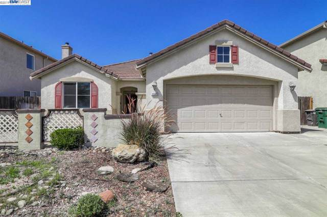 1541 Swallow Tail Ln, Manteca, CA 95337 (#40890134) :: Armario Venema Homes Real Estate Team