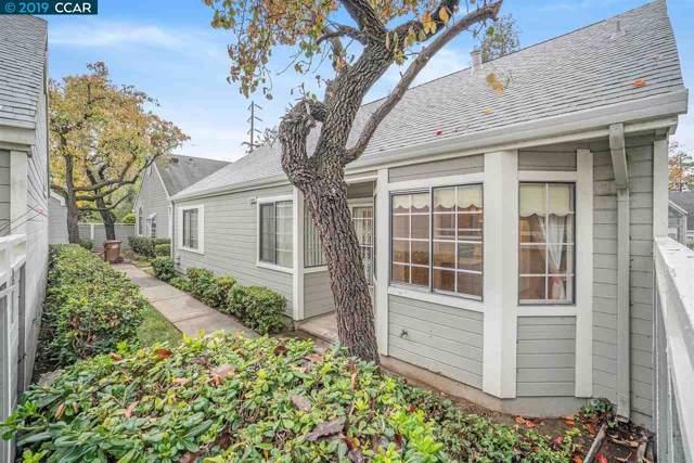 1702 Somerset Pl, Antioch, CA 94509 (#40890395) :: Armario Venema Homes Real Estate Team